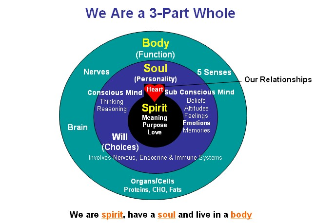 spirit-soul-body-mind-emotions-will